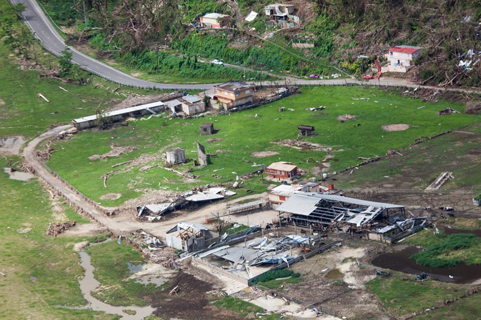 Barns and farming structures destroyed by Hurricane Maria in Utuado, Puerto Rico.