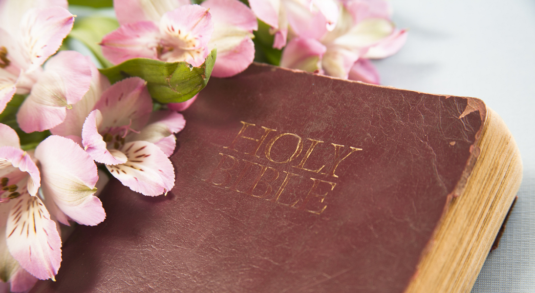 spring blossoms are next to a well-used Bible