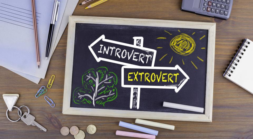 Introvert-extrovert chart