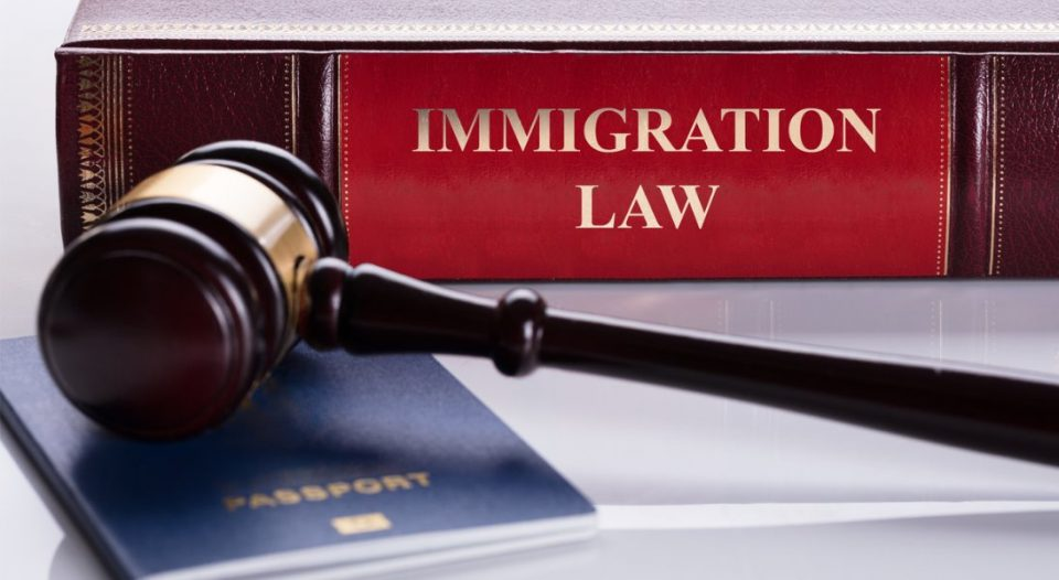close up of gavel and immigration law book