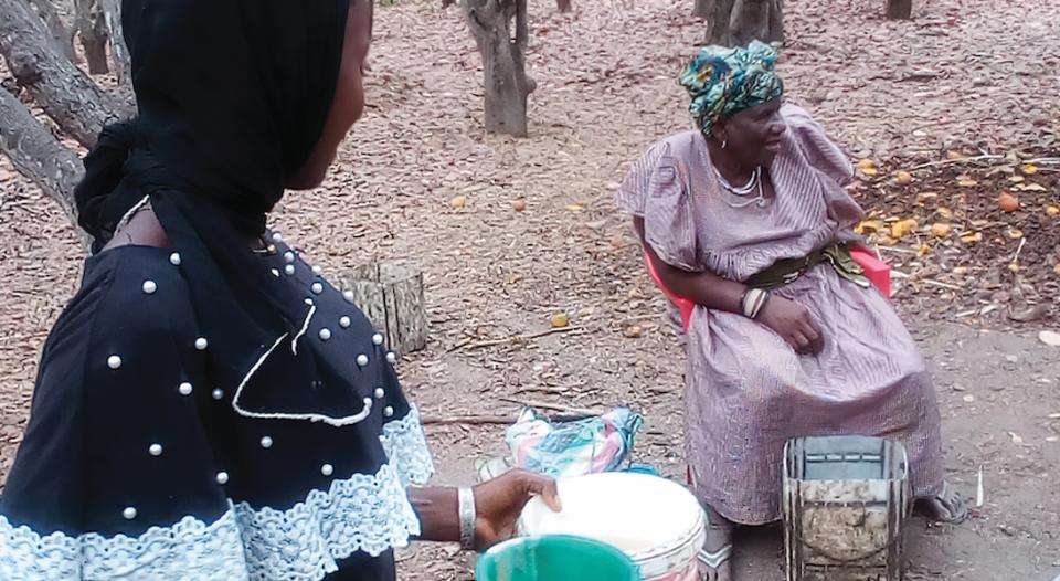 Gambian cashew farmers