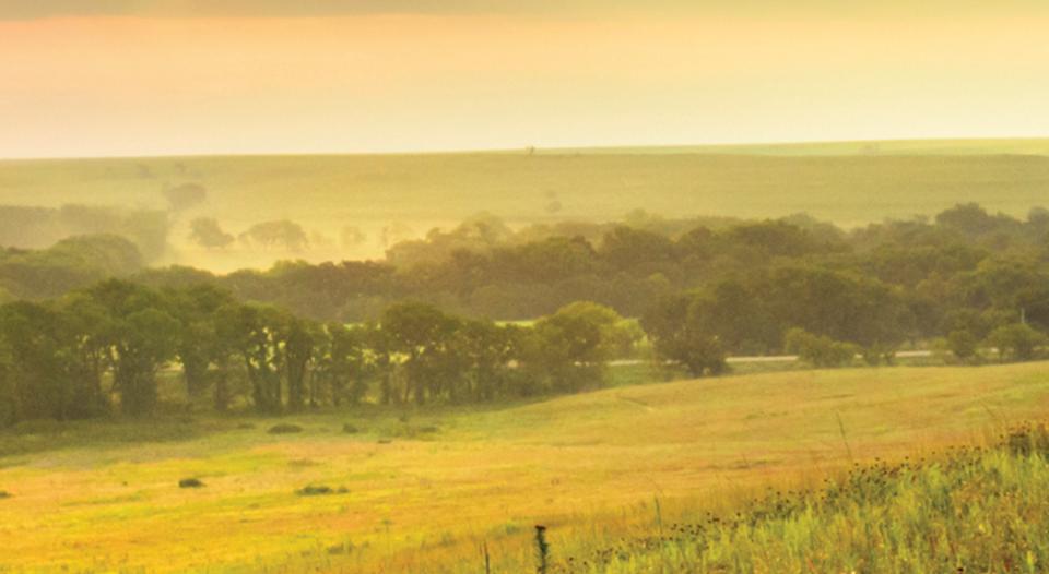 Osage tallgrass prairie