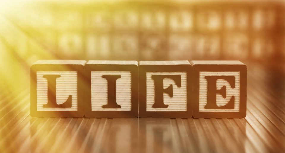The word life in blocks